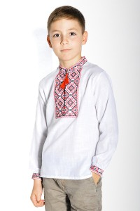 Вышиванка для мальчика Етномодерн М-1001-2